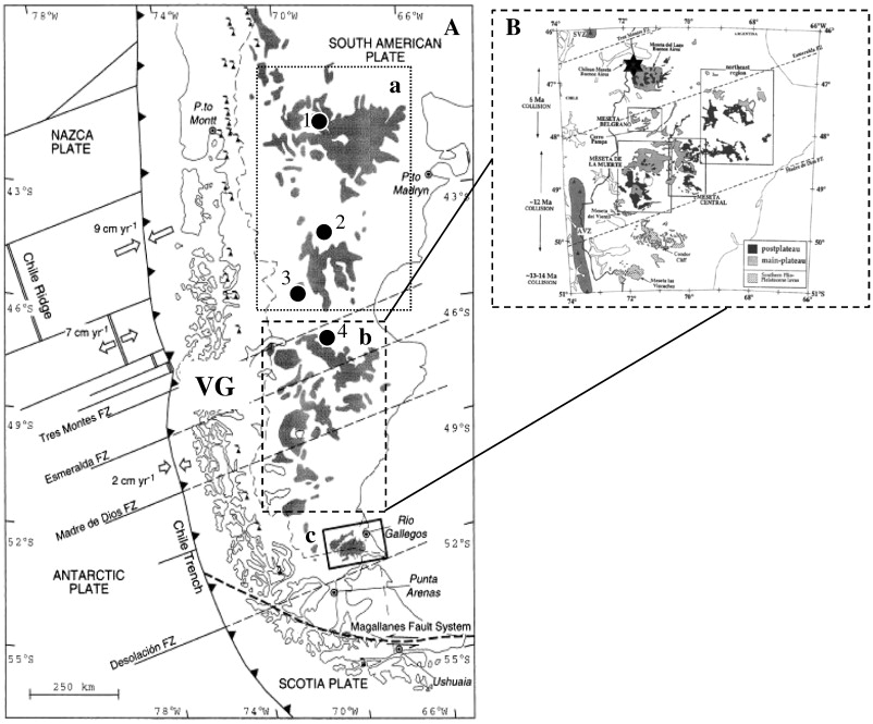 Refertilization Process In The Patagonian Subcontinental