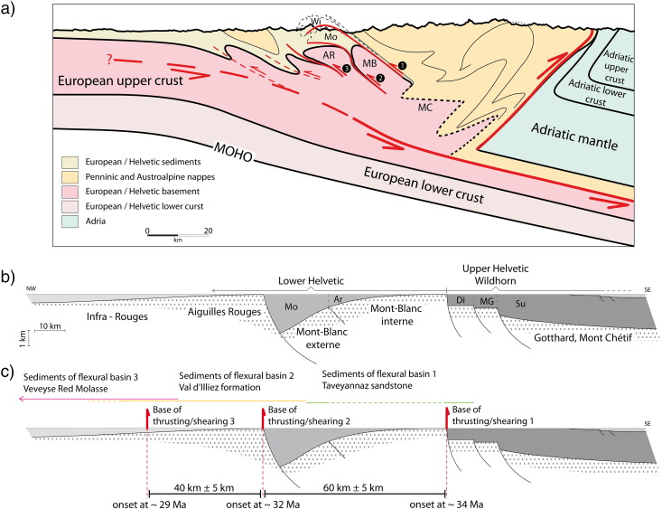 Formation of orogenic wedges and crustal shear zones by