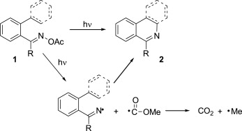 Natural products containing nitrogen heterocycles—some highlights.
