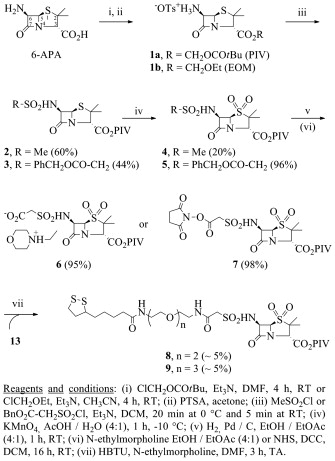 6 aminopenicillanic acid 6 apa derivatives equipped with anchoring