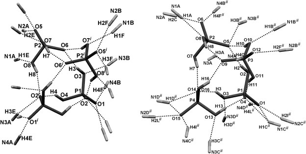 Adamantane Bisurea Derivatives Anion Binding In The Solution And In