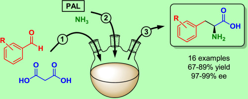 Telescopic one-pot condensation-hydroamination strategy for the synthesis of optically pure L-phenylalanines from benzaldehydes