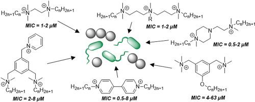 Quaternary Ammonium Compounds   SpringerLink