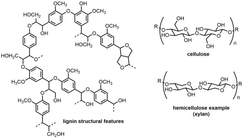 Separation of cellulose/hemicellulose from lignin in white