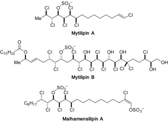 Organoselenium-catalyzed enantioselective syn-dichlorination