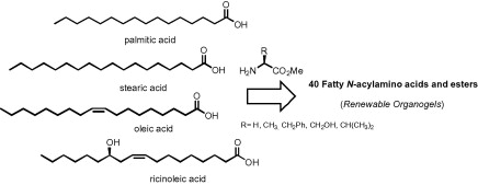 New N-acylamino acids and derivatives from renewable fatty