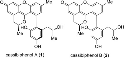 Two novel tetracycles cassibiphenols a and b from the flowers of download full size image ccuart Choice Image