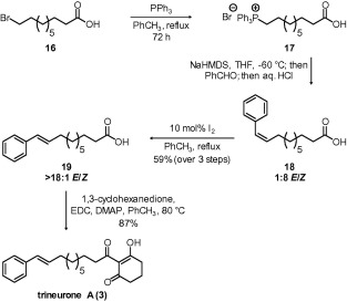 Synthesis of antifungal alatanone and trineurone polyketides