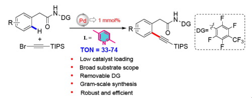 nowy produkt Najlepsze miejsce najbardziej popularny Palladium-catalyzed direct ortho-alkynylation of aryl ...
