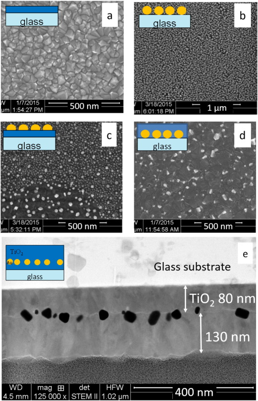 Plasmon resonance effect caused by gold nanoparticles formed on