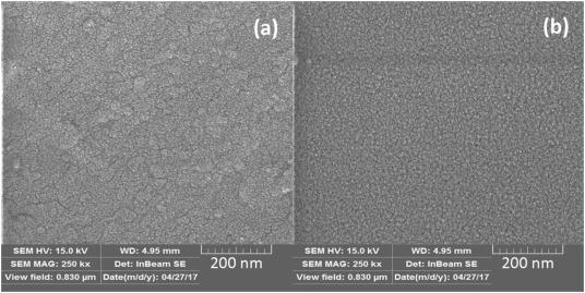 Wetting and photocatalytic properties of Ni-doped TiO2 coating on