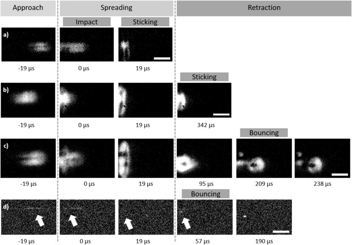 Impact dynamics of supercooled microdroplets on water
