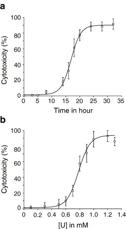 Role of the sodium-dependent phosphate co-transporters and of the