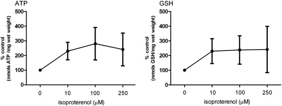 Isoproterenol effects evaluated in heart slices of human and rat in atp and gsh levels in rat heart slices following isoproterenol exposure for 24h ccuart Choice Image