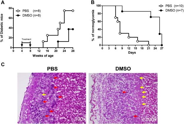 Dimethyl sulfoxide inhibits spontaneous diabetes and