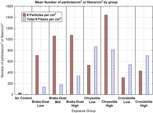 Evaluation of the dose-response and fate in the lung and pleura of