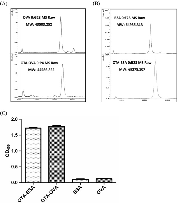 Identification of a high-affinity monoclonal antibody