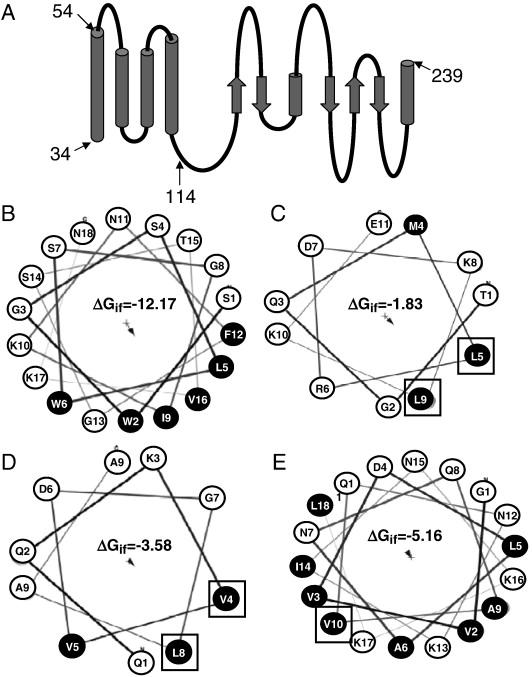 4l Engine Diagram 3