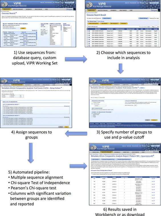 Metadata-driven comparative analysis tool for sequences