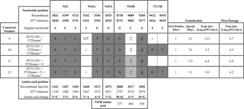 Recombinant Hepatitis C Virus Genotype 5a Infectious Cell Culture