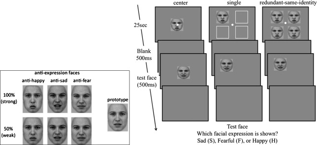 Redundancy effects in the processing of emotional faces