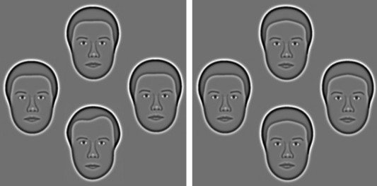 The Caledonian face test: A new test of face discrimination