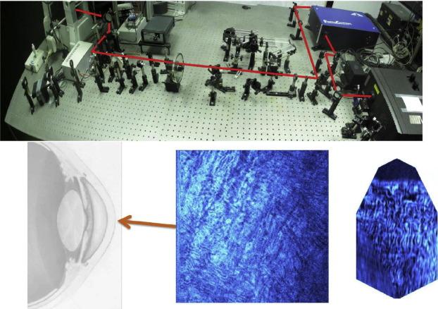 dcc5e651fc5 Vision science and adaptive optics
