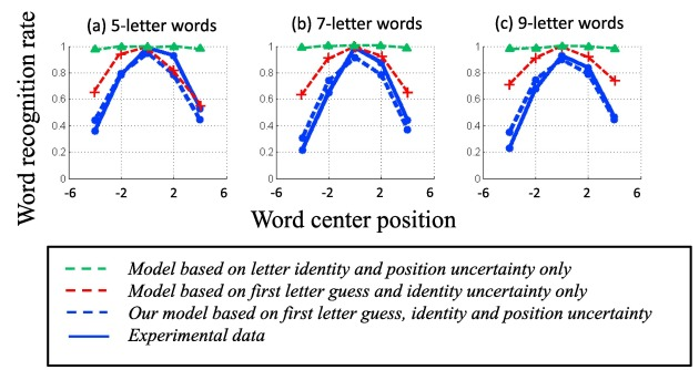 The optimal use of non-optimal letter information in foveal