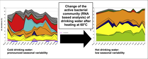 Seasonal dynamics of bacterial community structure and composition graphical abstract ccuart Choice Image