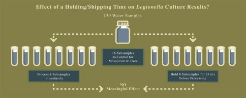 Effects of holding time and measurement error on culturing