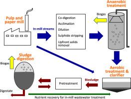 Anaerobic digestion of pulp and paper mill wastewater and sludge