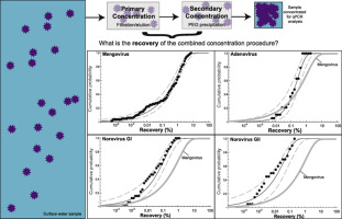 Variability in the recovery of a virus concentration