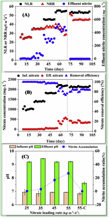 Effect of self-alkalization on nitrite accumulation in a high-rate