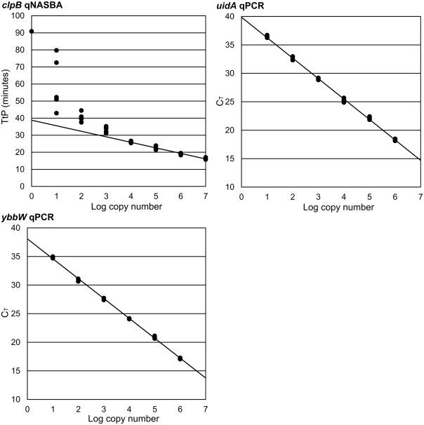 A highly specific Escherichia coli qPCR and its comparison