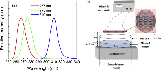 Effects And Inactivation Uv Single Of Combined Leds On mN8vny0wO
