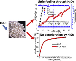 Prevention of UF membrane fouling in drinking water