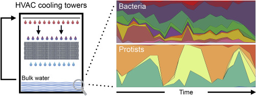 The cooling tower water microbiota: Seasonal dynamics and co