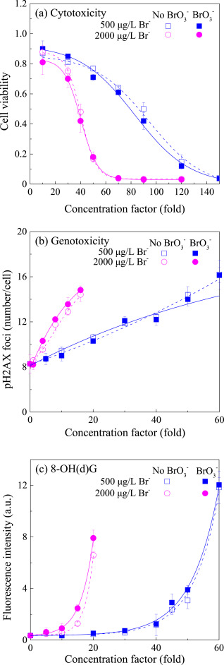 Underestimated risk from ozonation of wastewater containing