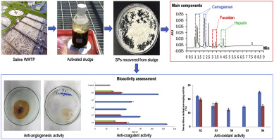 Recovery of high-value and scarce resources from biological