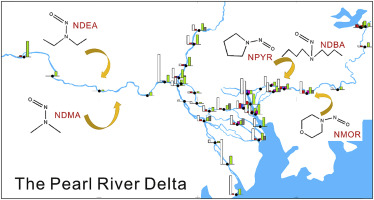 Occurrence of N-Nitrosamines in the Pearl River delta of