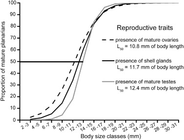 Population and reproductive patterns of the Neotropical
