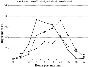Pre or post mortem muscle activity in Atlantic salmon (Salmo