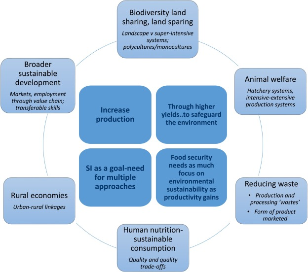 Sustainable intensification of aquaculture value chains