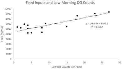 Feed management and the use of automatic feeders in the pond