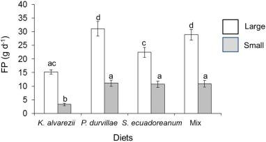 dieta ceto india plan de comidas pdf