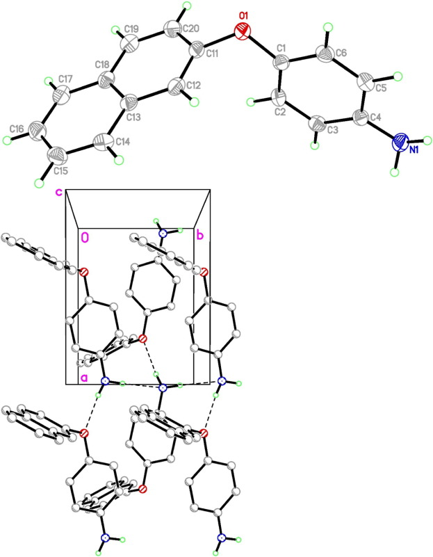 Synthesis And Bioelectrochemical Behavior Of Aromatic Amines
