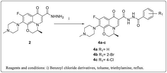 levofloxacin a Trichomonas tól