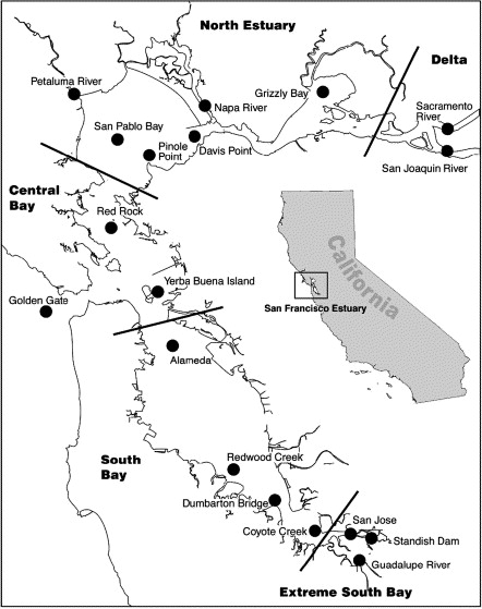 Polycyclic Aromatic Hydrocarbons In The San Francisco Estuary Water