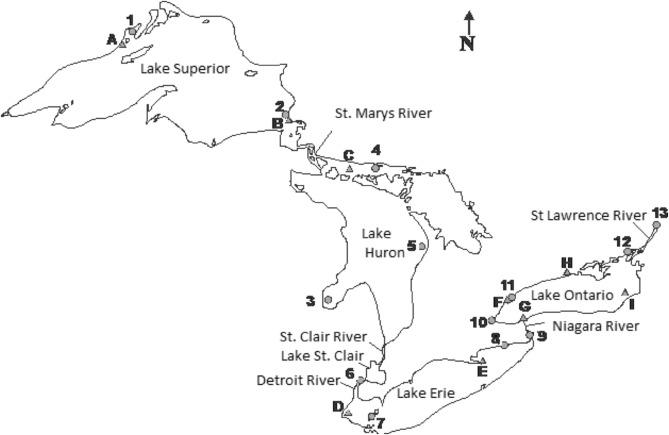 Mercury Levels In Herring Gulls And Fish 42 Years Of Spatio