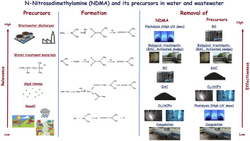 N-Nitrosodimethylamine (NDMA) and its precursors in water and